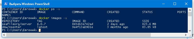 Seafile Server in Docker is ready for testing on Windows 10